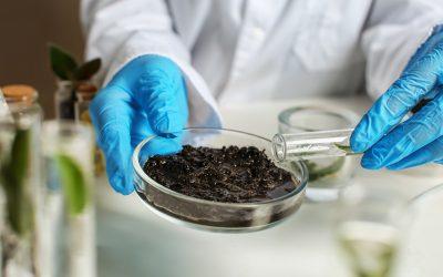 COPPEREPLACE, un proyecto internacional que reducirá el uso del cobre en viñedo