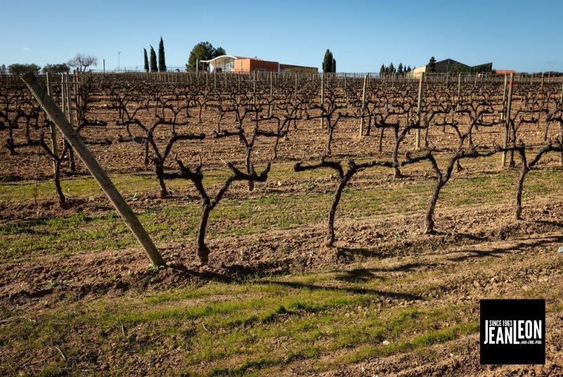 Jean Leon y CREAF colaboran en un estudio de secuestro de carbono en el viñedo