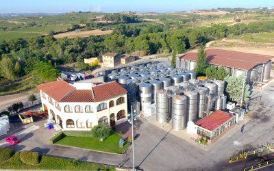 Cevipe Grup Cooperatiu i Castell d'Or consoliden la seva estratègia de creixement amb la incorporació de tres noves cooperatives