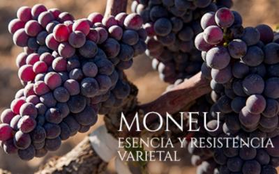 FAMILIA TORRES incorpora la variedad recuperada MONEU en su nuevo vino Clos Ancestral 2019
