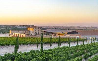 Purgatori 2017 de Familia Torres se corona como el mejor vino catalán del 2021 en los premios Vinari