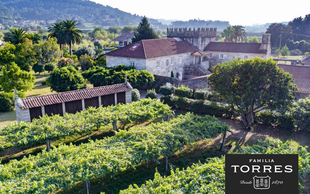 Blanco Granito 2019 del Pazo Torre Penelas, el primer vino fermentado y criado en granito gallego